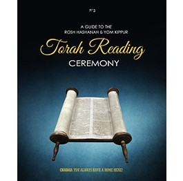 Torah Reading Companion