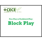 CECE: Blocks Play